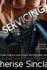 Servicing the Target Audiobook