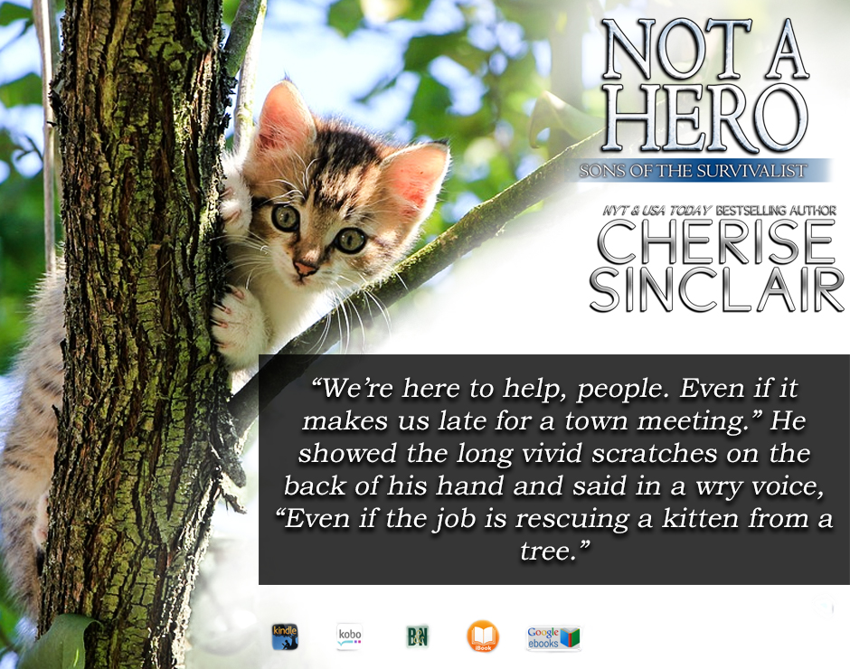 Not a Hero quote from book